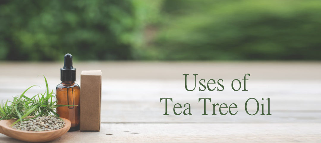 5 Amazing Uses of Tea Tree Oil